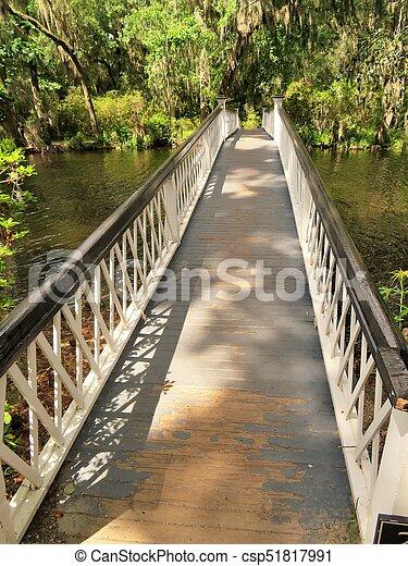 Bridge at Magnolia Plantation in Charleston, SC - csp51817991