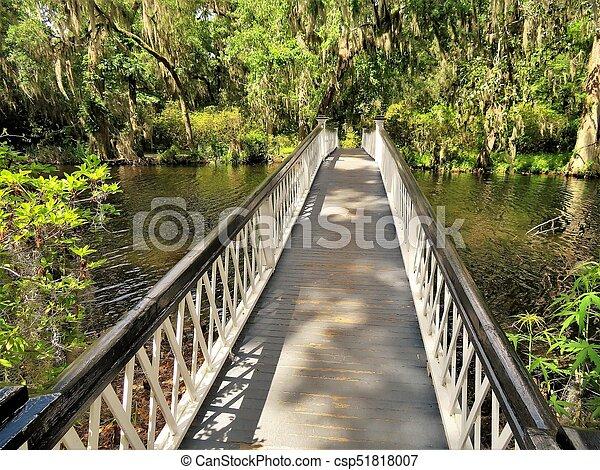 Bridge at Magnolia Plantation in Charleston, SC - csp51818007
