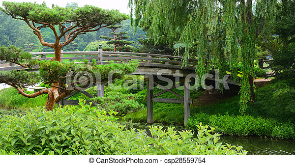 Bridge crossing over a flowing river leading to a Japanese Garden - csp28559754