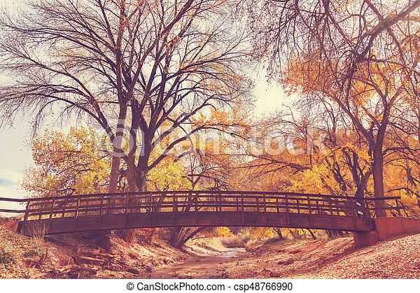 Bridge in autumn forest - csp48766990