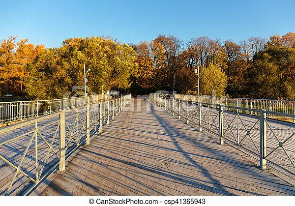 bridge in autumn park - csp41365943