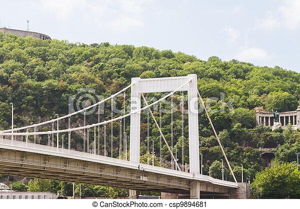Bridge in Budapest, Hungary - csp9894681
