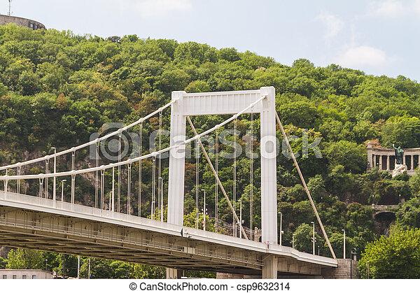 Bridge in Budapest, Hungary - csp9632314