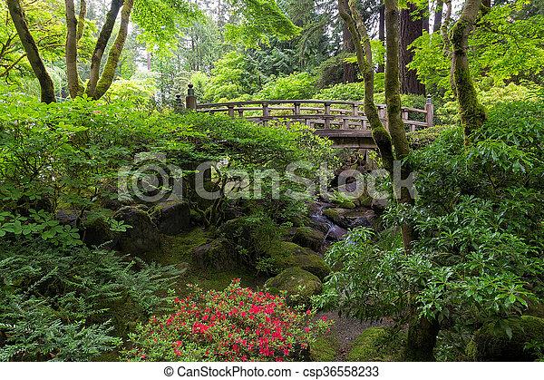 Bridge in Japanese Garden - csp36558233