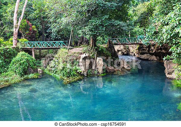 Bridge in jungle - csp16754591