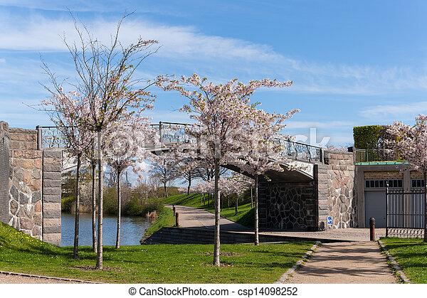 bridge in the park - csp14098252