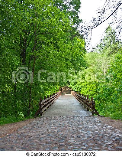 bridge in the park - csp5130372