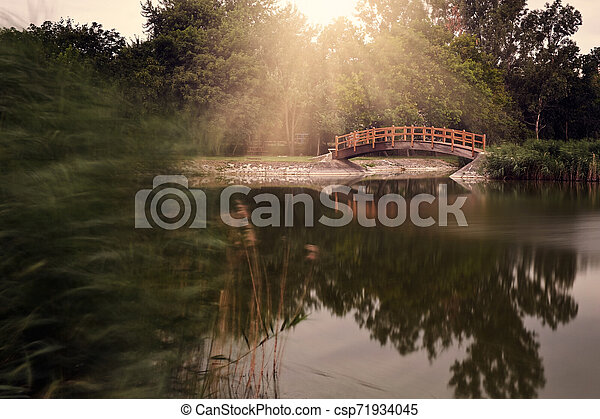 Bridge in the park - csp71934045