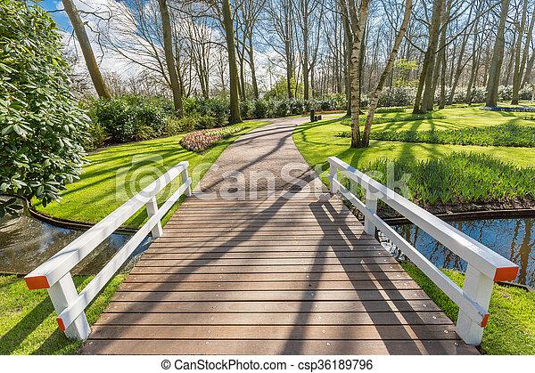 Bridge in the park - csp36189796