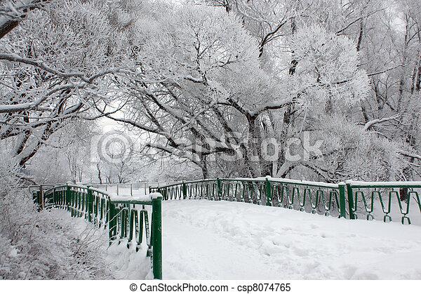 Bridge in winter park - csp8074765