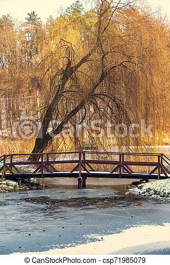 Bridge on forzen lake - csp71985079