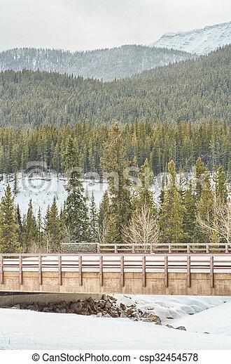 Bridge Over Cat Creek - csp32454578