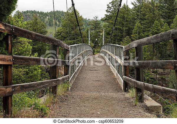 Bridge Over Hellroaring Creek - csp60653209