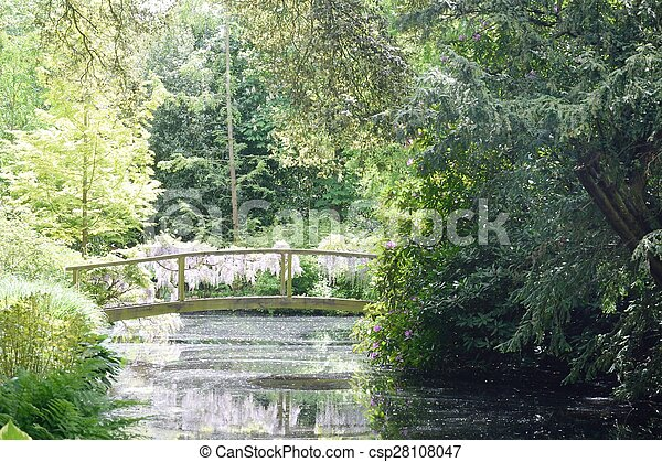 Bridge over stream in forest - csp28108047