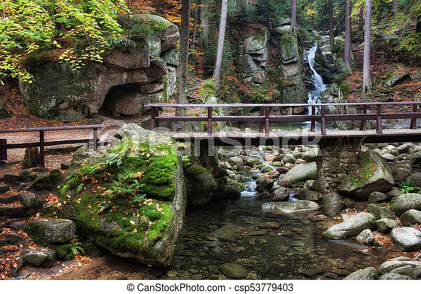 Bridge Over Stream in Mountain Forest - csp53779403