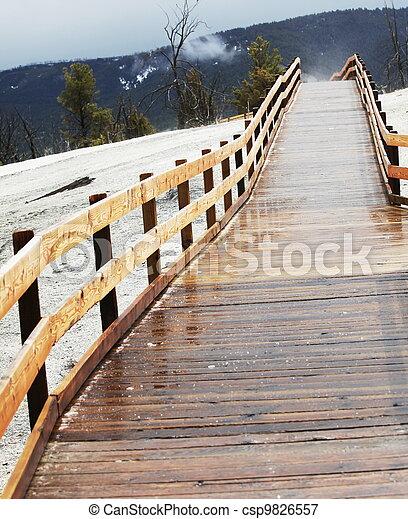 Bridge - csp9826557