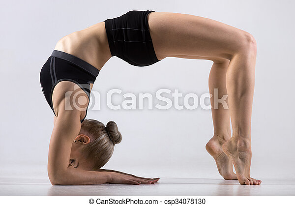 bridge pose on elbows sporty beautiful young woman
