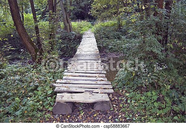 Bridge - csp58883667