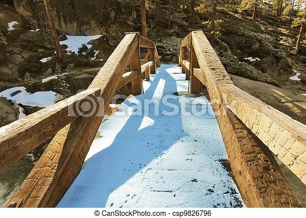 Bridge - csp9826796