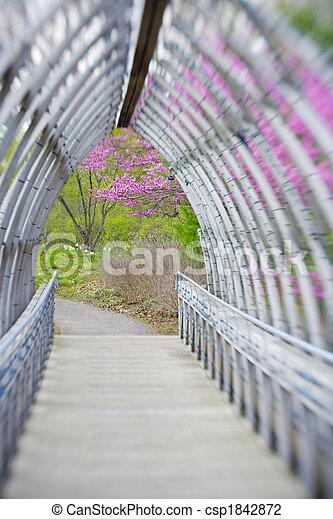 Bridge - csp1842872