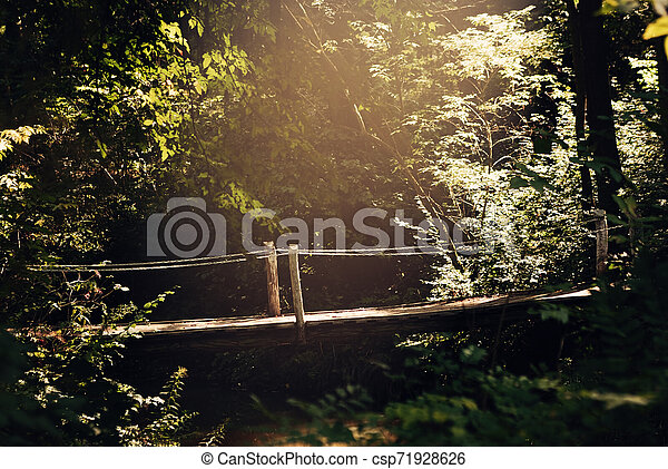 Bridge - csp71928626