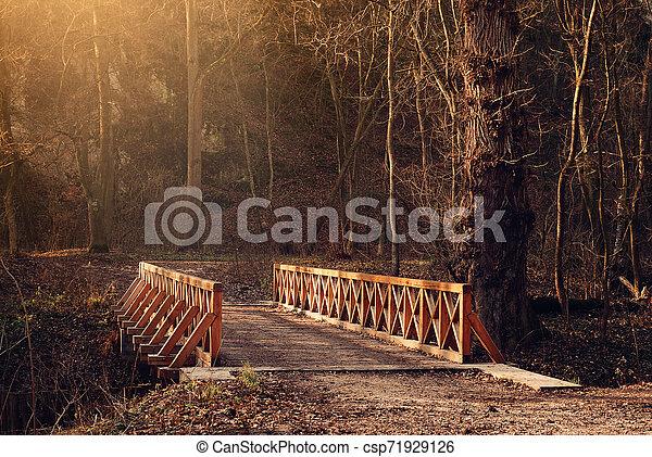 Bridge - csp71929126