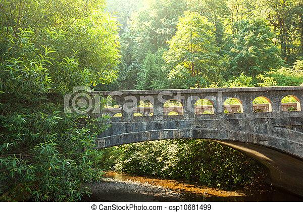 Bridge - csp10681499