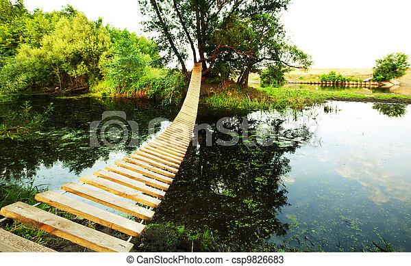 Bridge - csp9826683