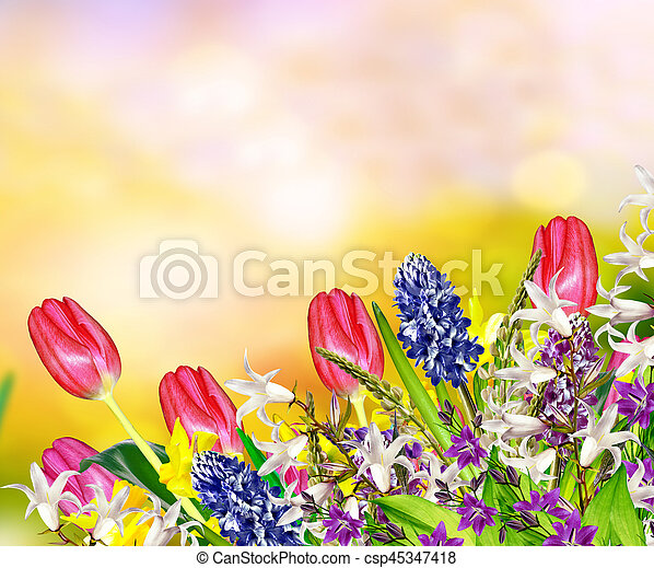 Bright and colorful spring flowers daffodils and tulips stock bright and colorful spring flowers daffodils and tulips csp45347418 mightylinksfo