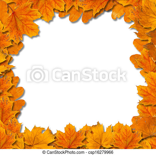 Bright autumn leaves on a white background isolated - csp16279966