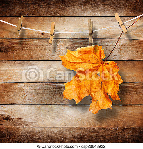 Bright autumn leaves on the old wooden background  - csp28843922