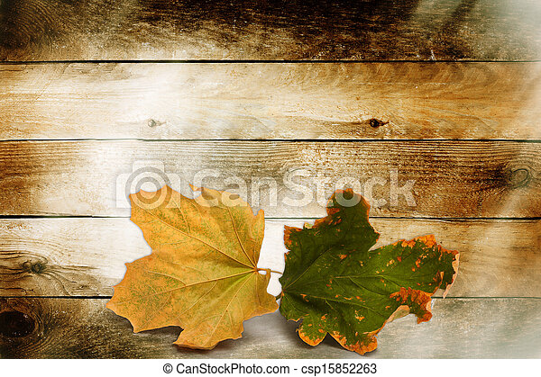 Bright autumn leaves on the wooden background  - csp15852263