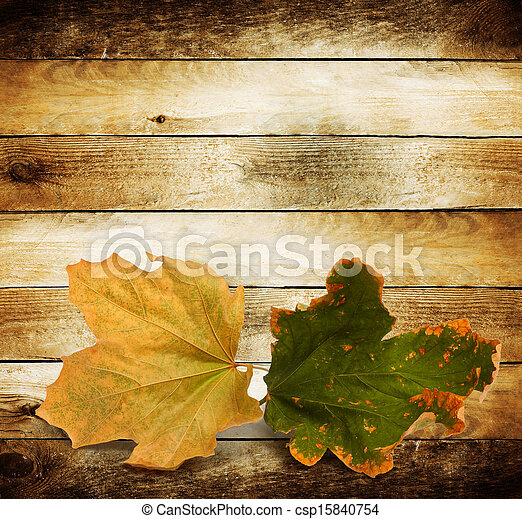 Bright autumn leaves on the wooden background  - csp15840754