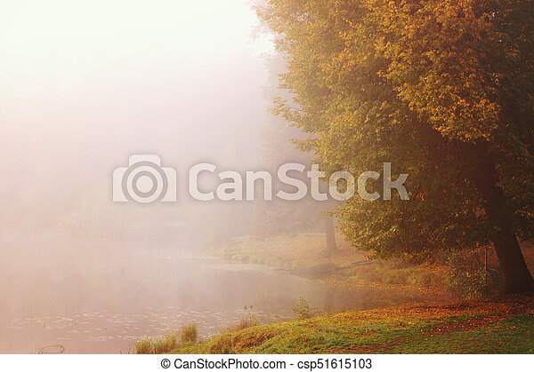 Bright Autumn on the Bank of a Foggy Lake - csp51615103
