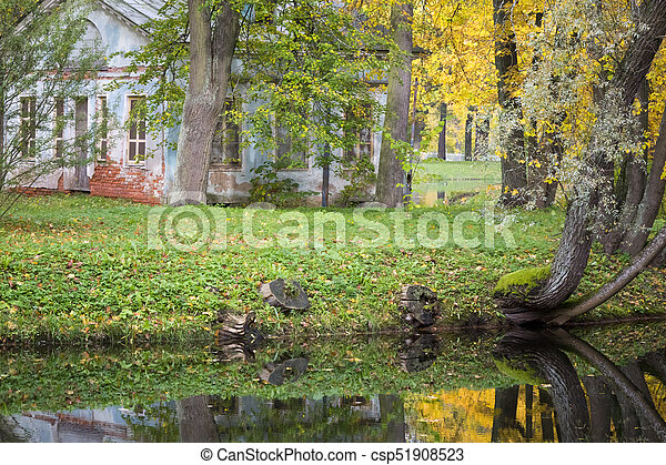 bright autumn tree in park - csp51908523