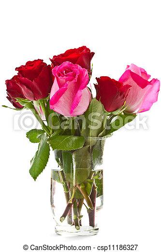 bright beautiful pink roses - csp11186327