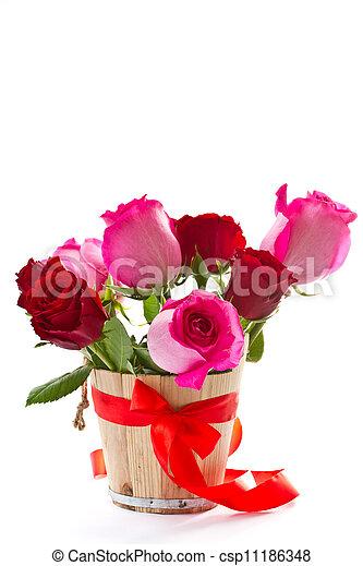 bright beautiful pink roses - csp11186348