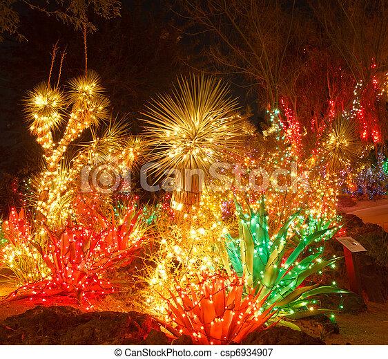 bright christmas lights in a cactus garden csp6934907