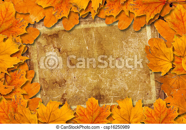 Bright fallen autumn leaves on the old paper background - csp16250989