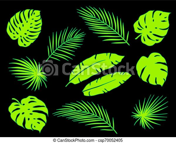 Bright Green Tropical Palm Leaves Silhouettes Set Bright Neon Green Tropical Palm Leaves Set On Black Background Canstock Find the perfect tropical leaves stock photos and editorial news pictures from getty images. https www canstockphoto com bright green tropical palm leaves 70052405 html