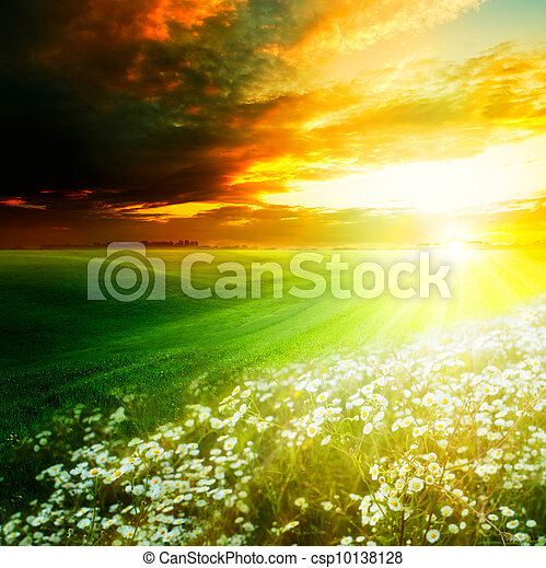 Bright light morning on the green hills. Abstract natural backgrounds - csp10138128