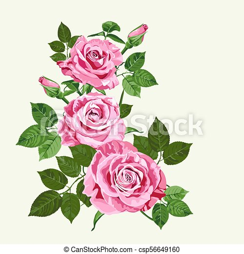 bright pink roses on pale green background bright pink clip art rh canstockphoto com vector ross cook victor roses
