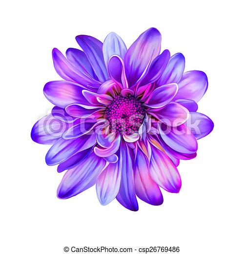 Bright Purple Pink Mona Lisa Flower Spring Flowerolated On White