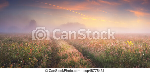 Bright sunrise on autumn meadow - csp48775431
