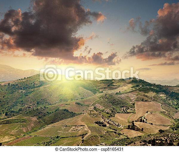 Bright sunset - csp8165431