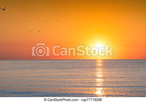 bright sunset - csp77718298