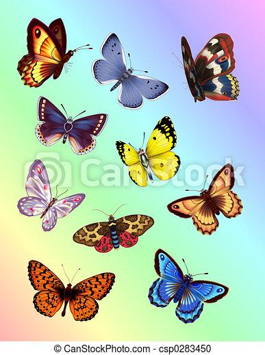 Mariposas brillantes - csp0283450