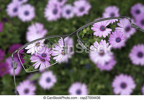brille - csp27004436