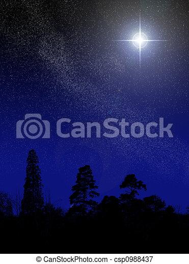 brilliant star - csp0988437