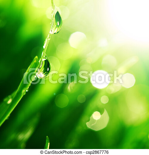 Una gota de agua brillante - csp2867776